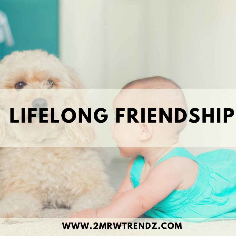 How to Maintain Lifelong Friendships Forever