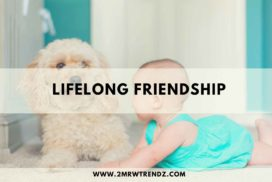 How to maintain lifelong friendship